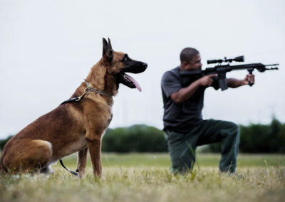 TACK9-personal-protection-working-K9-Belgian-Malinois-with-assault-rifle-gallery